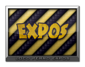 expos_chip1